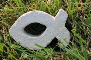 Georgios symbol-fish2