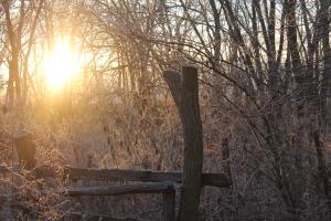 December ice 2 (2)